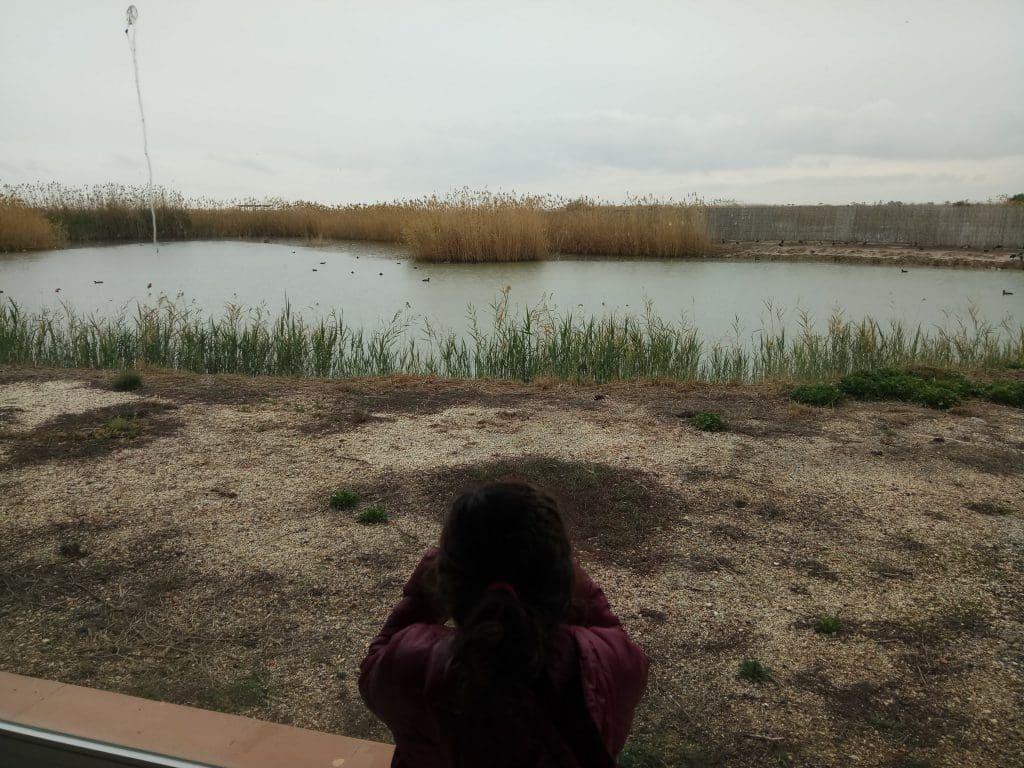 Parque Natural El Hondo. Elche