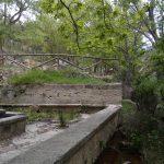 Ruta Buitrera de Alcoy: Project Canyet