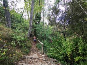 Nacimiento del río vinalopo